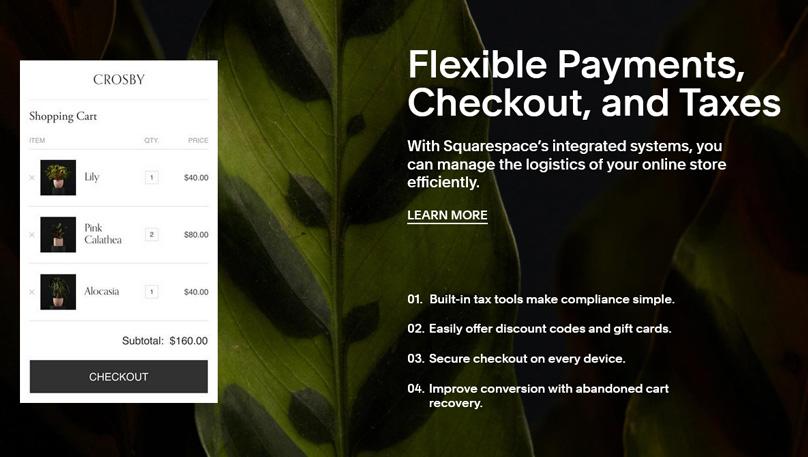 Squarespace Payments